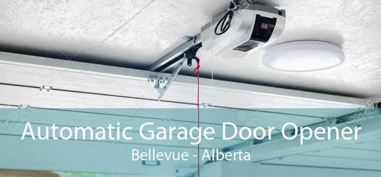 Automatic Garage Door Opener Bellevue - Alberta