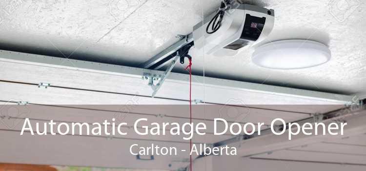 Automatic Garage Door Opener Carlton - Alberta