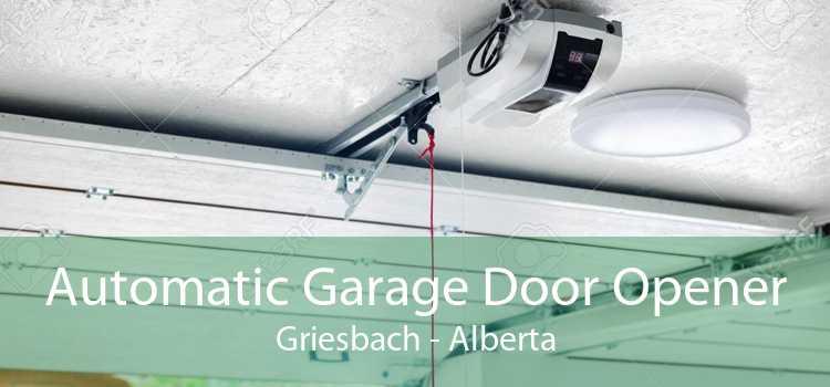 Automatic Garage Door Opener Griesbach - Alberta