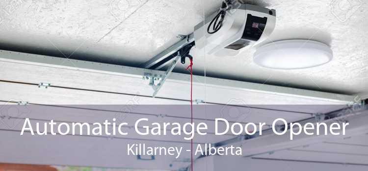 Automatic Garage Door Opener Killarney - Alberta