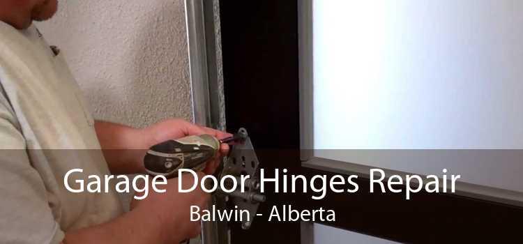 Garage Door Hinges Repair Balwin - Alberta