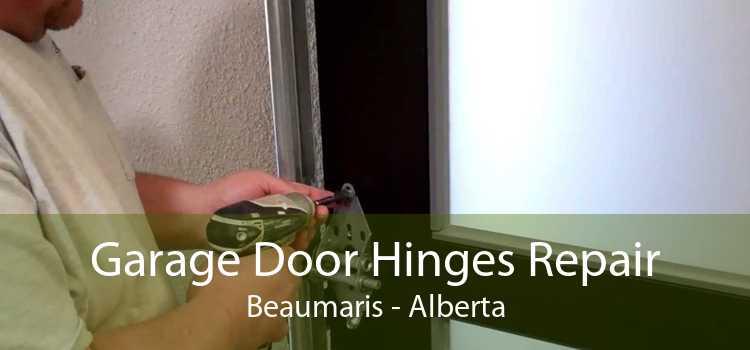 Garage Door Hinges Repair Beaumaris - Alberta