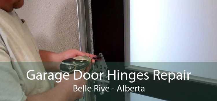 Garage Door Hinges Repair Belle Rive - Alberta