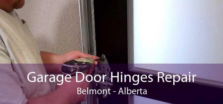 Garage Door Hinges Repair Belmont - Alberta