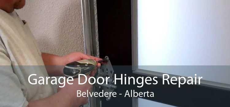 Garage Door Hinges Repair Belvedere - Alberta