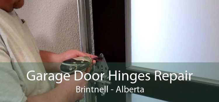 Garage Door Hinges Repair Brintnell - Alberta