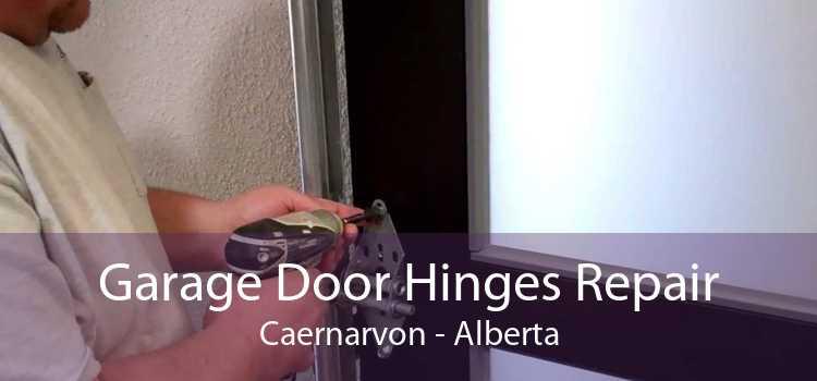 Garage Door Hinges Repair Caernarvon - Alberta