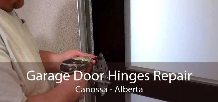 Garage Door Hinges Repair Canossa - Alberta