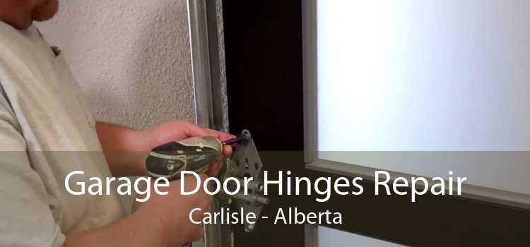 Garage Door Hinges Repair Carlisle - Alberta