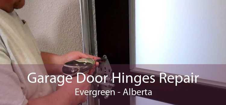 Garage Door Hinges Repair Evergreen - Alberta