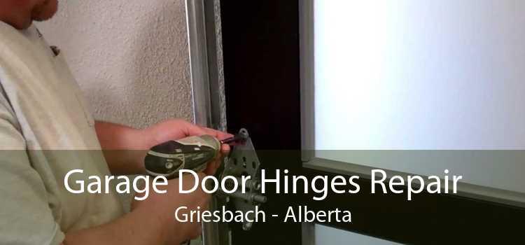 Garage Door Hinges Repair Griesbach - Alberta