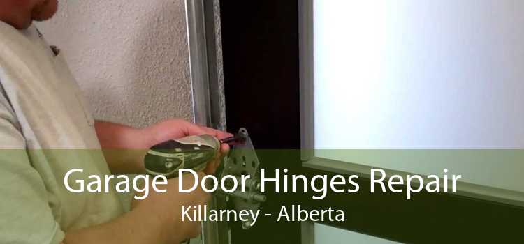 Garage Door Hinges Repair Killarney - Alberta