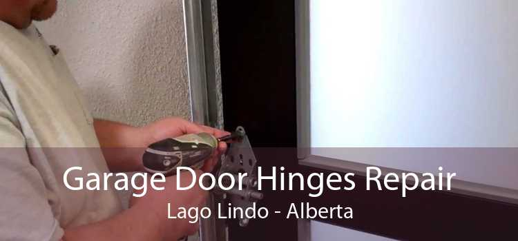 Garage Door Hinges Repair Lago Lindo - Alberta