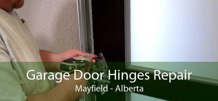 Garage Door Hinges Repair Mayfield - Alberta