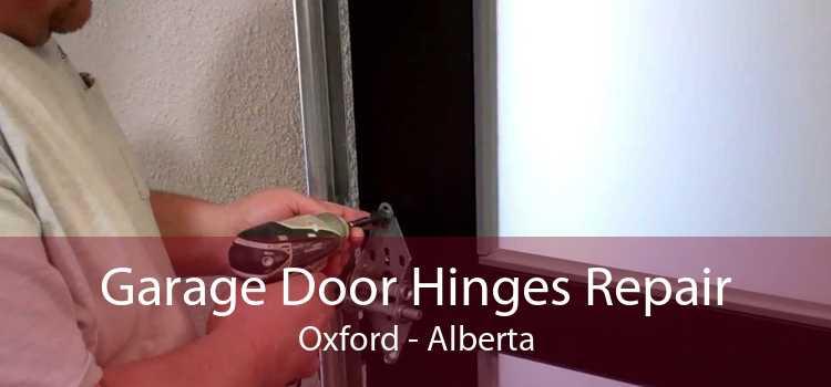 Garage Door Hinges Repair Oxford - Alberta