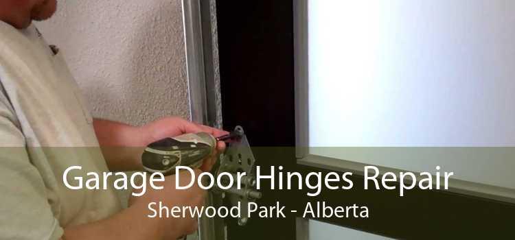 Garage Door Hinges Repair Sherwood Park - Alberta