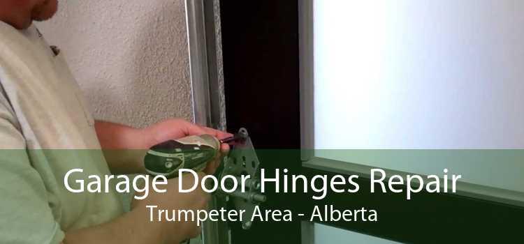 Garage Door Hinges Repair Trumpeter Area - Alberta