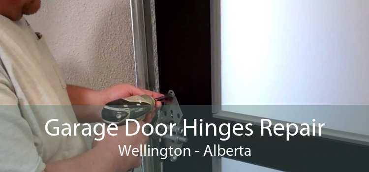 Garage Door Hinges Repair Wellington - Alberta