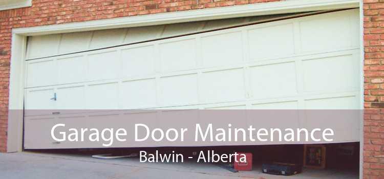 Garage Door Maintenance Balwin - Alberta
