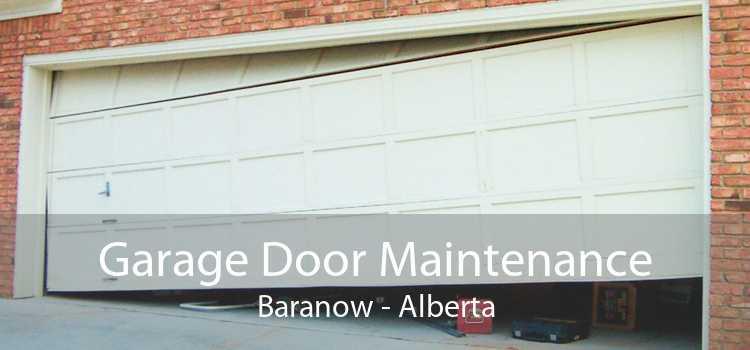 Garage Door Maintenance Baranow - Alberta