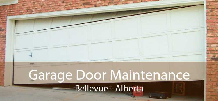 Garage Door Maintenance Bellevue - Alberta
