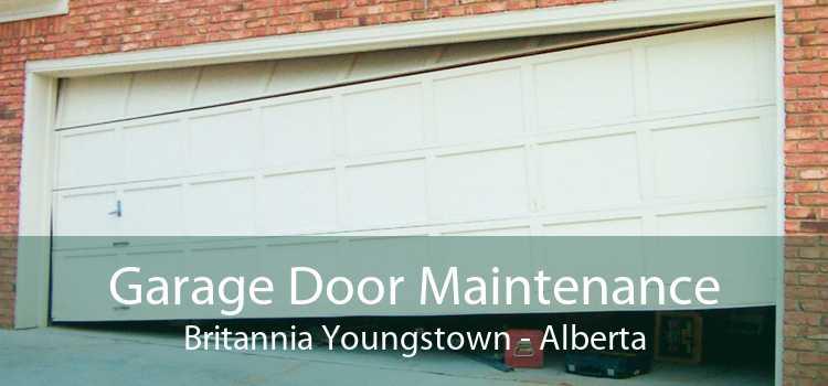 Garage Door Maintenance Britannia Youngstown - Alberta