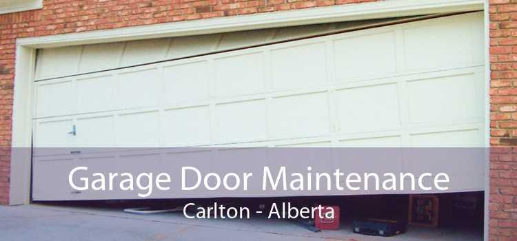 Garage Door Maintenance Carlton - Alberta