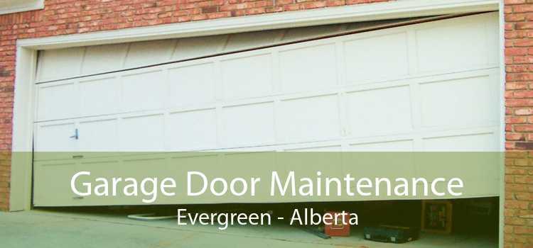 Garage Door Maintenance Evergreen - Alberta