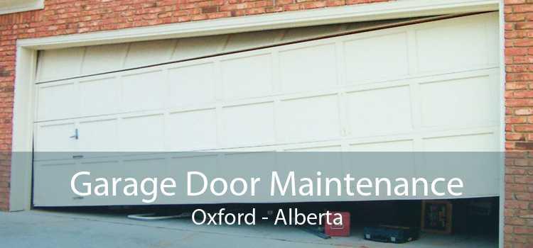 Garage Door Maintenance Oxford - Alberta