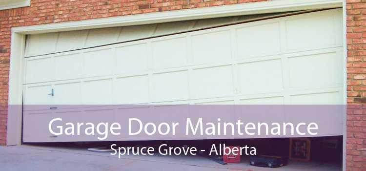 Garage Door Maintenance Spruce Grove - Alberta