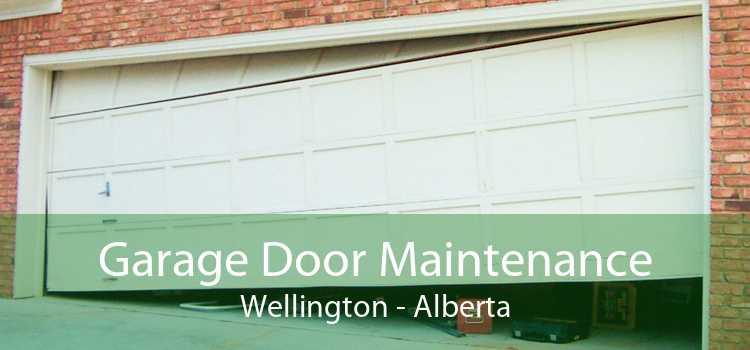 Garage Door Maintenance Wellington - Alberta