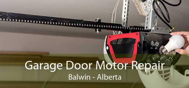 Garage Door Motor Repair Balwin - Alberta