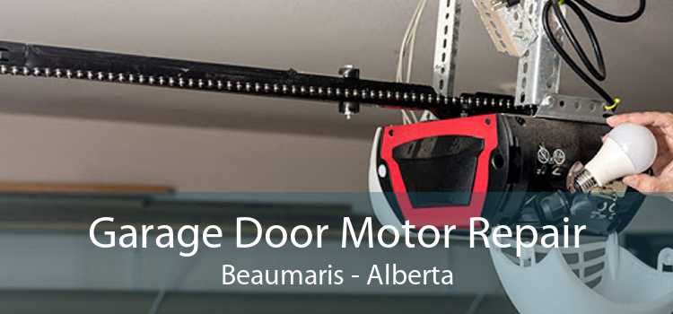 Garage Door Motor Repair Beaumaris - Alberta