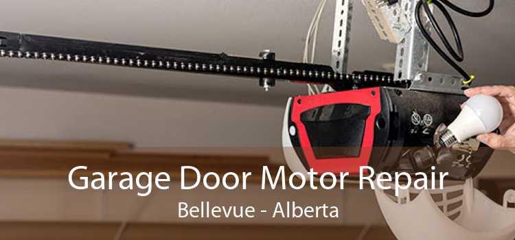 Garage Door Motor Repair Bellevue - Alberta