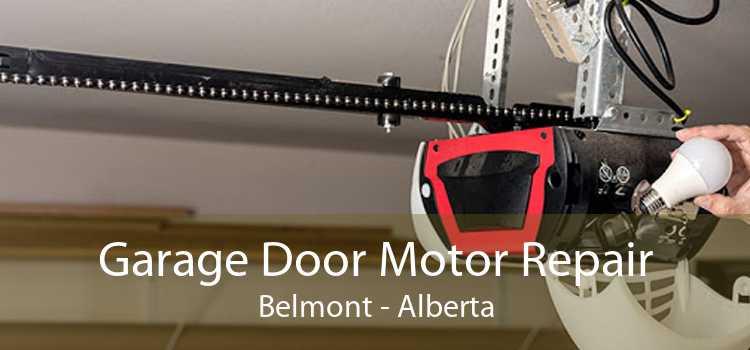 Garage Door Motor Repair Belmont - Alberta