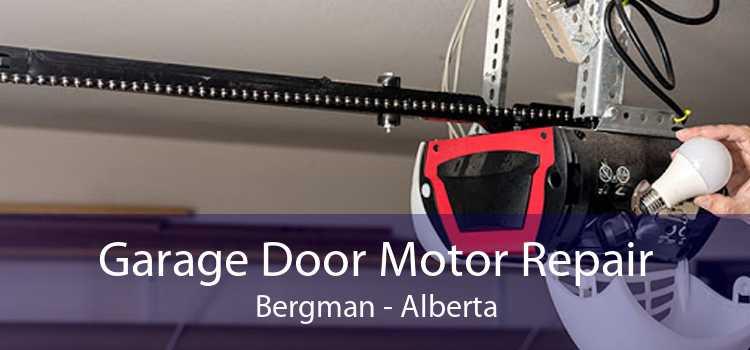Garage Door Motor Repair Bergman - Alberta