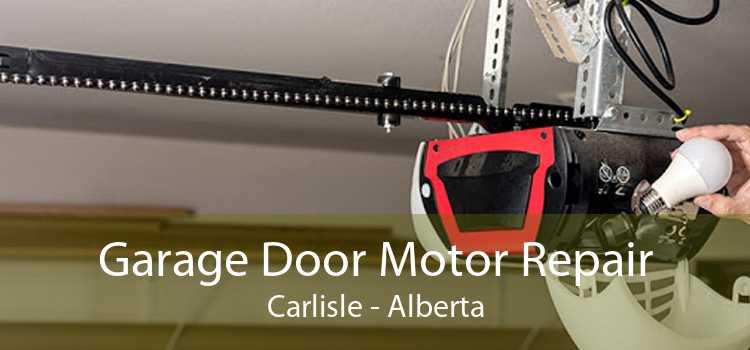 Garage Door Motor Repair Carlisle - Alberta