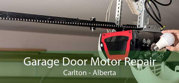 Garage Door Motor Repair Carlton - Alberta