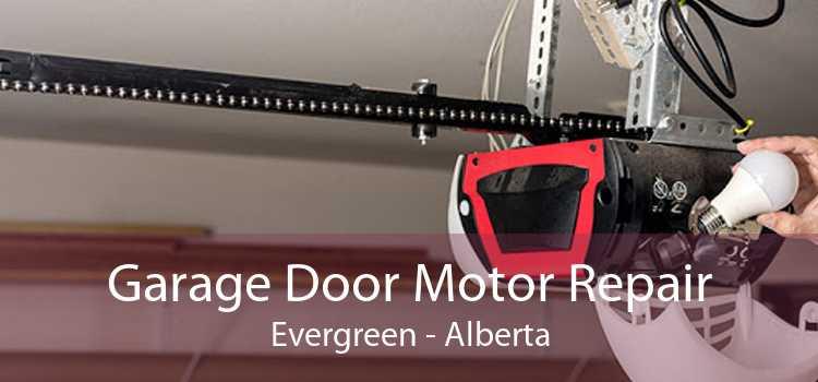 Garage Door Motor Repair Evergreen - Alberta
