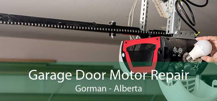 Garage Door Motor Repair Gorman - Alberta