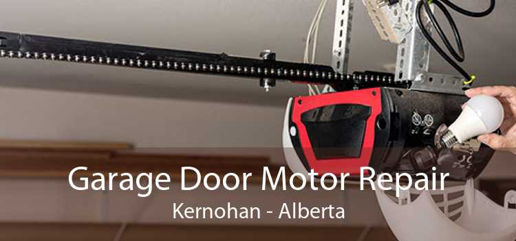 Garage Door Motor Repair Kernohan - Alberta