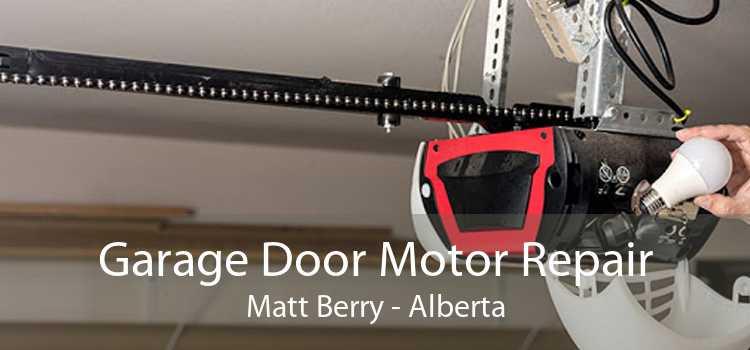 Garage Door Motor Repair Matt Berry - Alberta