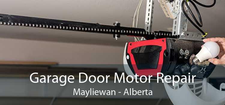 Garage Door Motor Repair Mayliewan - Alberta