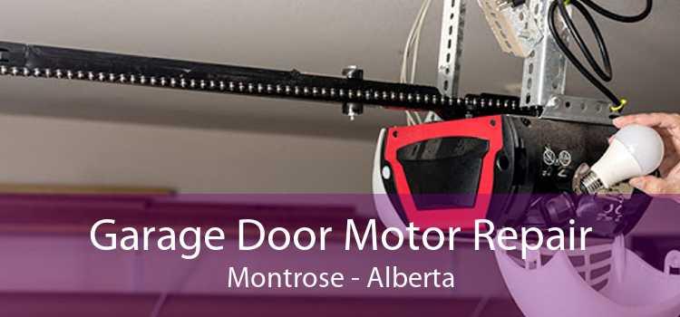Garage Door Motor Repair Montrose - Alberta