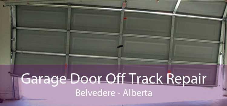 Garage Door Off Track Repair Belvedere - Alberta