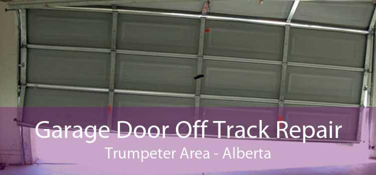 Garage Door Off Track Repair Trumpeter Area - Alberta