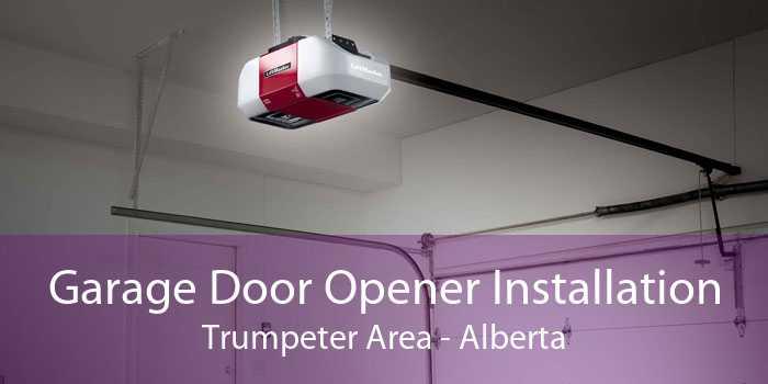 Garage Door Opener Installation Trumpeter Area - Alberta