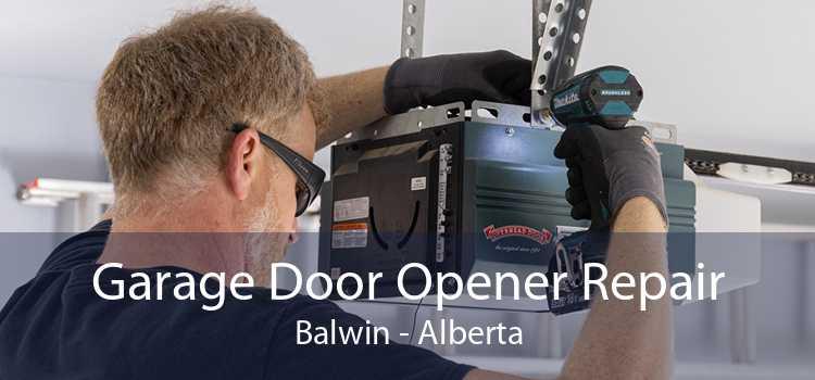 Garage Door Opener Repair Balwin - Alberta