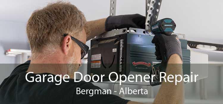 Garage Door Opener Repair Bergman - Alberta