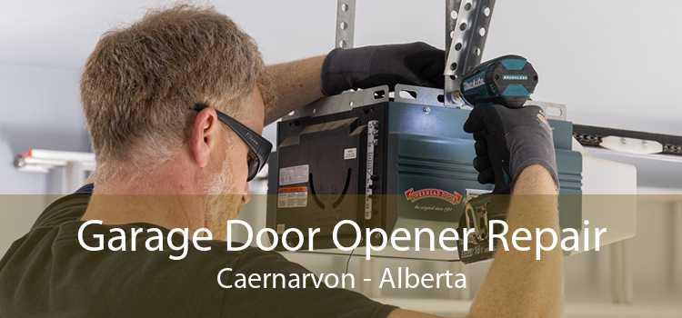 Garage Door Opener Repair Caernarvon - Alberta